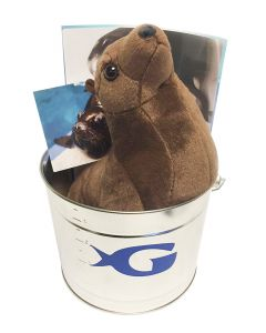 Georgia Aquarium California Sea Lion Adopt Kit