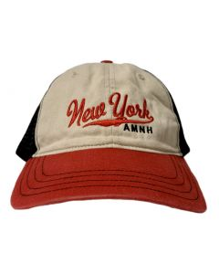 Adult Tri-Color Embroidered New York Trucker Cap