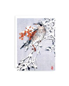 Redwing In Winter Japanese Woodblock Print Card Set