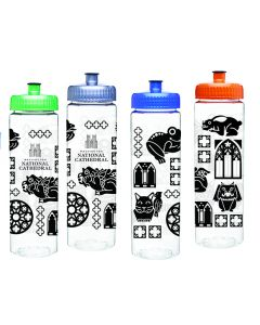 Cathedral Icons Water Bottle