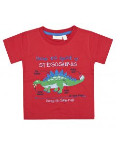 Boys How to Spot a Stegosaurus Tee